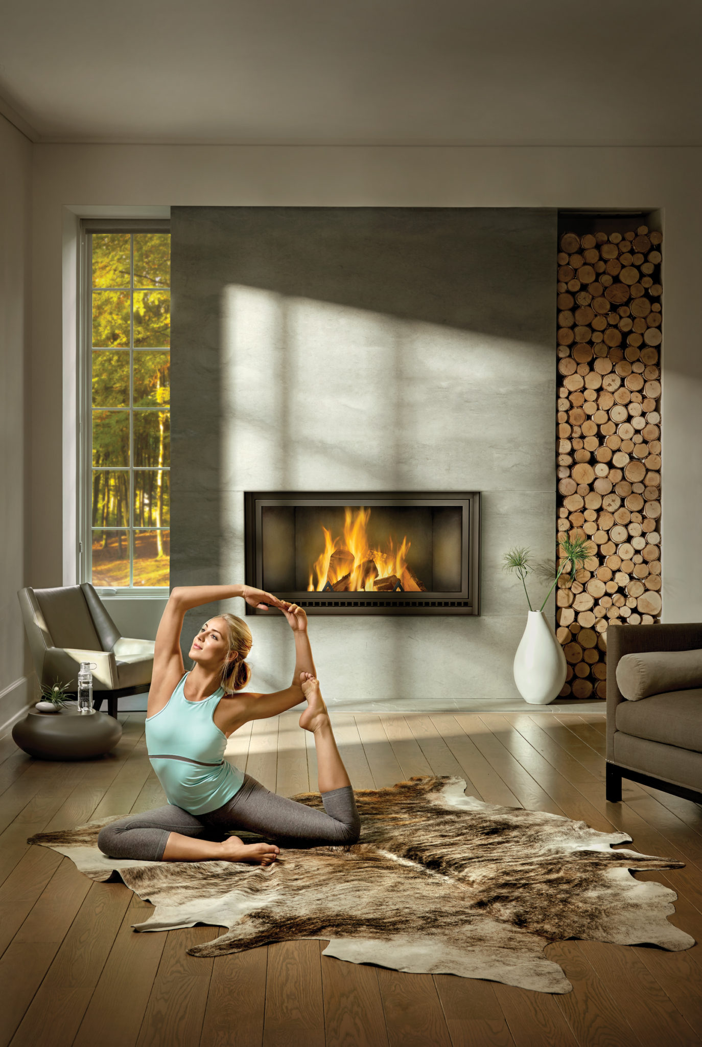 fireplaces index living series driftwood vector room kester fireplace napolean napoleon